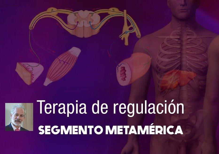 Curso-Taller en terapia de BioRegulación Segmento metamérica by Arturo O'Byrne
