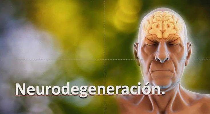 Neurodegeneración 1